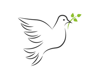 White dove with green branch and leaves