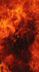 Printed roller blinds Fire / Flame fire background