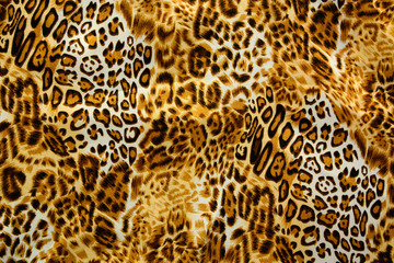 Leo, Animal swatch ~ seamless background