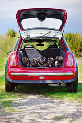 group of puppies in a car trunk