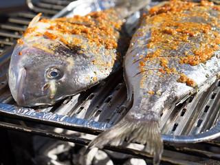 Fisch grillen - Fisch - Dorade - Grill - grillen