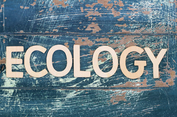 Ecology written with wooden letters on rustic wood