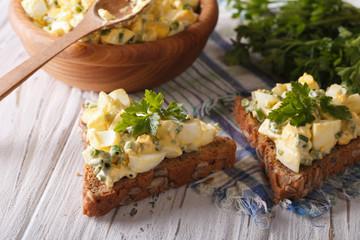 egg salad with onions and mayonnaise closeup. Horizontal