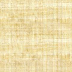 papyrus texture - seamless pattern - ridged surface