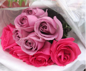 Bouquet of pink and mauve roses