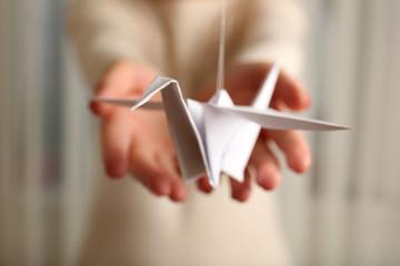 Closeup of female hands with paper crane