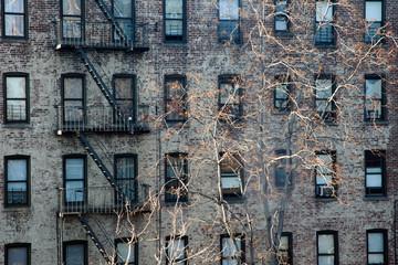 Facade Bronx