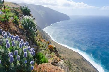 Madeira Fototapete