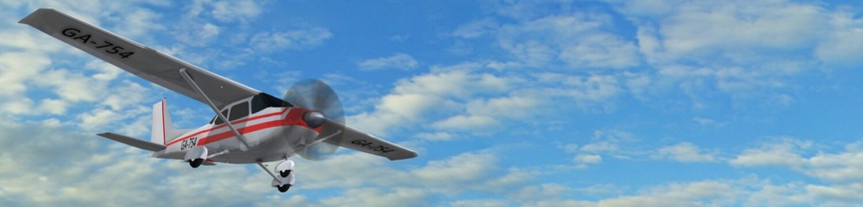 most popular single propeller light aircraft in fly