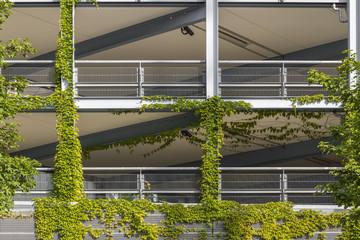bewachsenes Gebäude