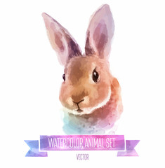 Vector set of watercolor illustrations. Cute Rabbit
