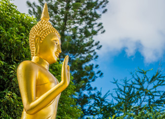 The statue of Buddha posture in Thailand