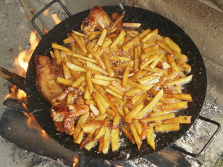French fries and chicken meat