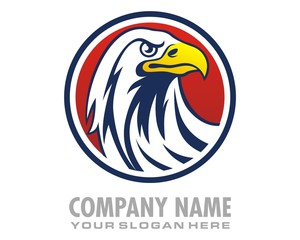 eagle hawk falcon logo image vector