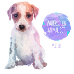 Vector set of watercolor illustrations. Cute jack russel