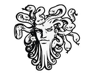 medusa head of the snake