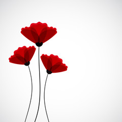 Abstract nature background. Red poppy flowers.