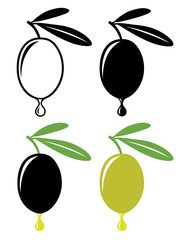 Vector olives with drop of oil in color and black and white