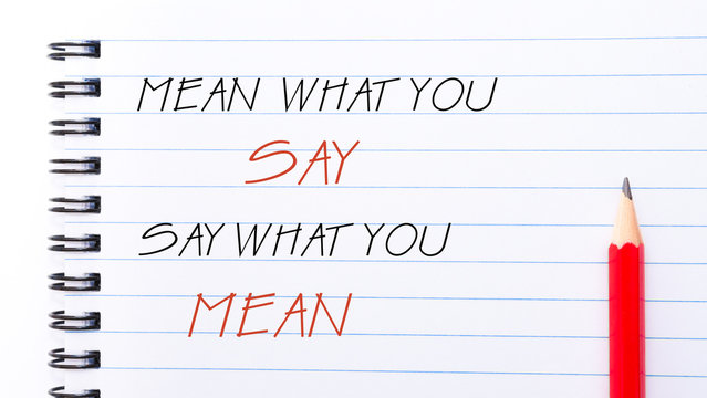 Mean What You Say Say What You Mean