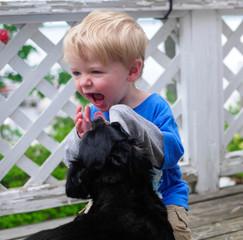 USA, Michigan, Portrait of giggling boy with dog