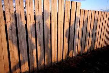Hilbre Island, Shadows of people on wooden fence