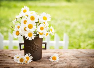 Bouquet of daisy flowers