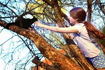 teenager beautiful girl help black cat climb down the tree in th