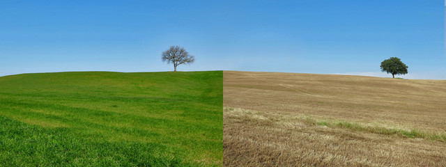 stagioni inverno\primavera