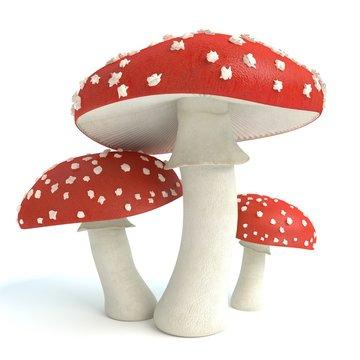 3d illustration of amanita mushrooms