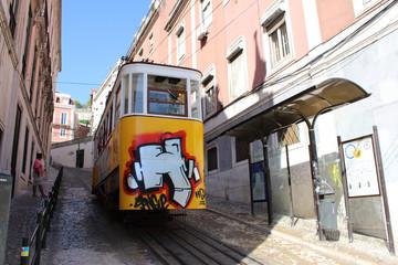 Typical Lisbon Tram, Portugal