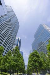 品川 高層ビル群と新緑