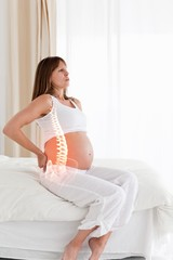 Highlighted spine of pregnant woman