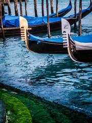 Venise les gondoles
