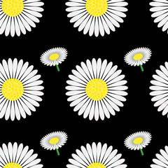 Seamless pattern with chamomile, vector illustration