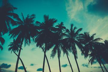 Retro stylized palm trees on tropical beach