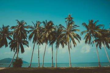 Retro stylized palm trees on summer tropical shore