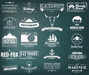 Retro Vintage Insignias or Logotypes set. Vector design elements