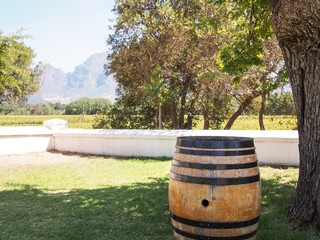 WIne Country - South Africa