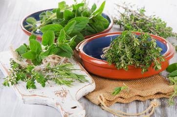 Fresh green mediterranean herbs.