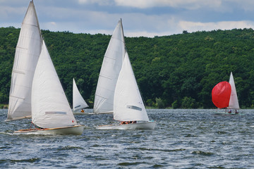 Regatta, sailing