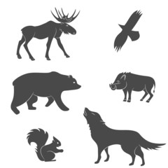 Set of forest animals. Bear, eagle, squirrel, wolf, pig, moose