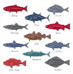 Big collection of marketable fish symbols. Vector set.