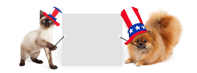Wall Mural - Independence Day Dog and Cat Holding Up Banner