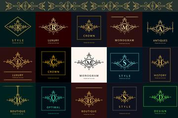 Monogram design elements, graceful template. Elegant line art