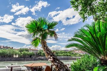 Les quais du Rhône à Lyon
