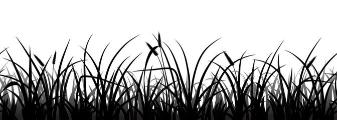 Wall Mural - Seamless grass silhouette on white, vector illustration