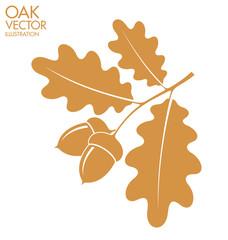Oak. Branch