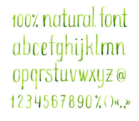 Hand drawn watercolor green natural font.