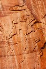 Sandstone People Abstract Capitol Reef National Park Utah