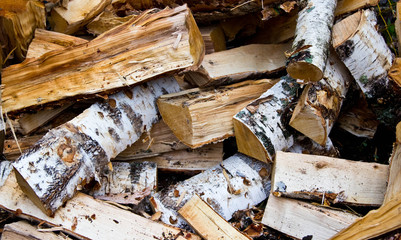 Birch wood in the woodpile